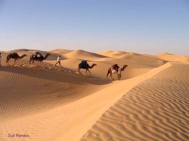 Atrisahara : le guide de voyager dans le désert Maroc et algérie
