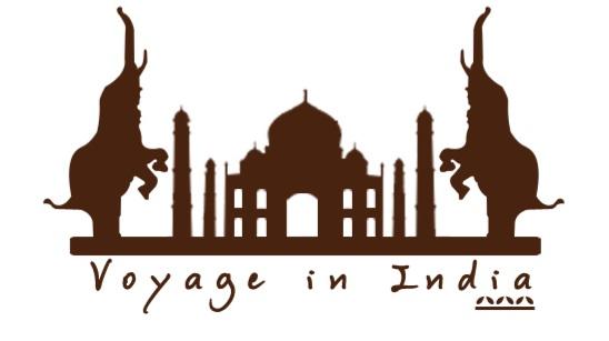 Voyage in India Tour opérateur francophone en Inde